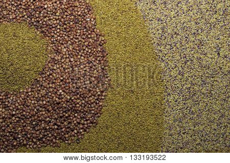 Various seed alfalfa grass millet vetch as background