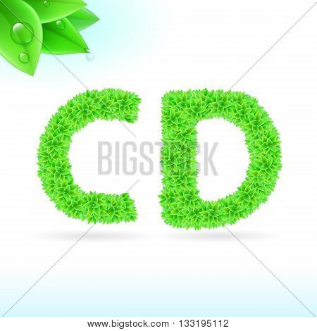 Sans serif font with green leaf decoration on white background. C and D letters