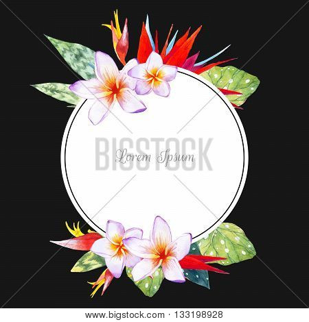 Floral illustration with tropical plants on black background. Composition with plumeria, strelitzia, palm and begonia leaves.