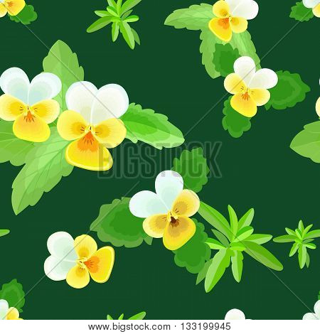 Pansy with leaves.Seamless pattern with yellow and white flowers on a dark green background.Floral vector illustration.Can be used for textilefabricwrapping paper.