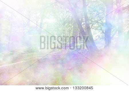 Beautiful rainbow sunlight  woodland - a soft, faded woodland copse scene flooded with bright light and a bokeh rainbow effect