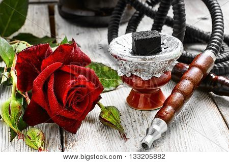 Hookah And Red Rose