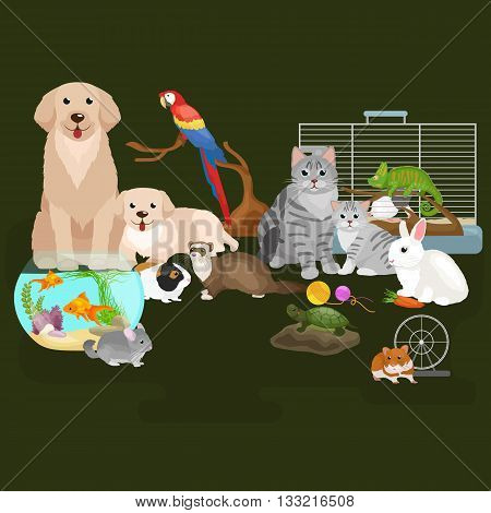 Home pets set, cat dog parrot goldfish hamster ferret, cartoon vector illustration, domesticated animals