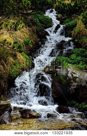 Stream in the mountain. Waterfall in the mountains