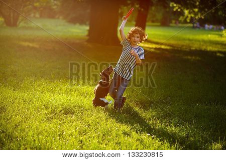 Boy of 8-9 years plays with his black and white dog on the lawn in the park. He has raised a hand with frisbee up. The doggy stand on hinder legs. She is ready to a jump. Scattered sunlight.