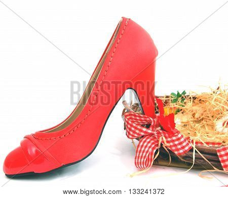 picture of a red female shoes on a white background.