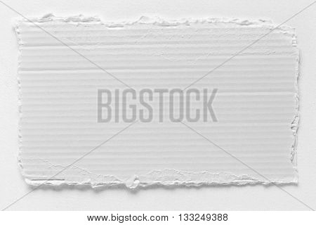 Piece Of White Cardboard Tear Texture