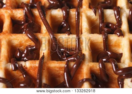 Belgian Waffles With Chocolate Icing Macro. Horizontal Background