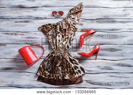 Leopard dress and red heels. Bright red purse and shoes. Woman's attractive outfit with sunglasses. Brilliance and originality.