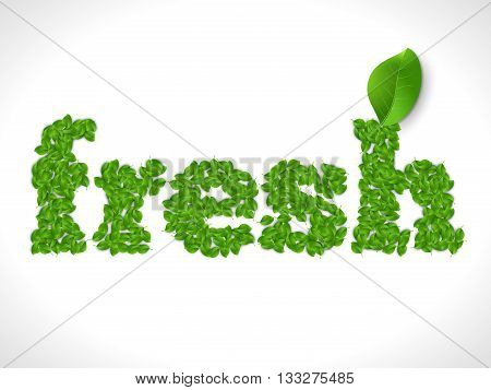 Eco friendly word FRESH made of green vector leafs. Eco text concept.
