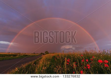 Rural scenery with poppies and evening storm colors
