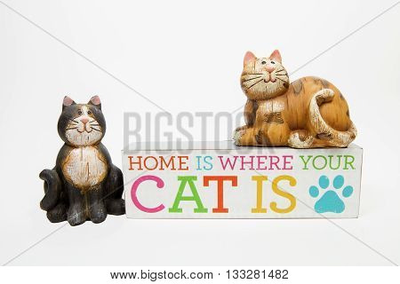A cat themed still life against a white background