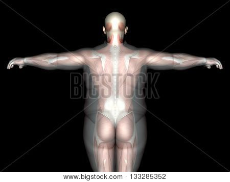 Concept, conceptual 3D illustration fat overweight vs slim fit diet with muscles young man black background, metaphor weight loss, body, fitness, fatness, obesity, health, healthy, male, dieting shape
