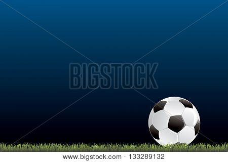 vector soccer ball in grass on dark blue background