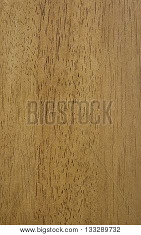 texture of natural wood pattern or background