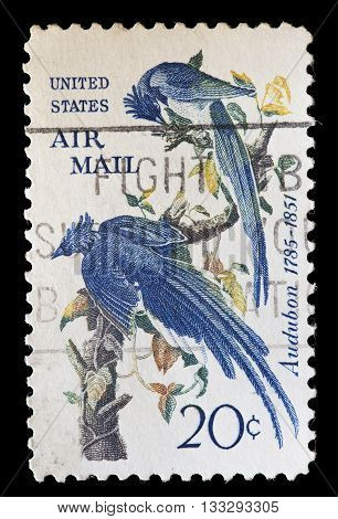 United States Used Postage Stamp Showing Blues Birds Illustration