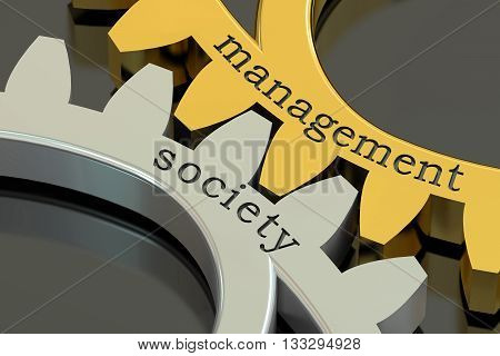 management society concept on the gearwheels 3D rendering