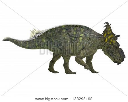 Pachyrhinosaurus Side Profile 3D Illustration - Pachyrhinosaurus was a ceratopsian herbivorous dinosaur that lived in the Cretaceous Period of Alberta Canada.