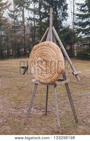 Arrows stuck in the center of the target made of straw