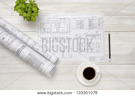 Drafts, cup of coffee and houseplant are on wooden surface. Top view compositin. Workplace of architect or constructor. Exact calculation. Office workplace. Increase working efficiency. Improving mood and productivity. Reducing stress. Engineering work. C