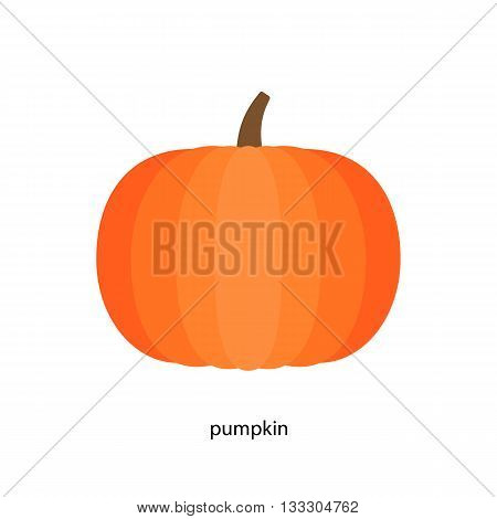 Pretty  pumpkin in bright orange color  with handle