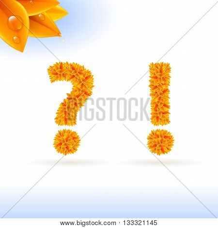 Sans serif font with autumn leaf decoration on white background. Question and exclamation marks