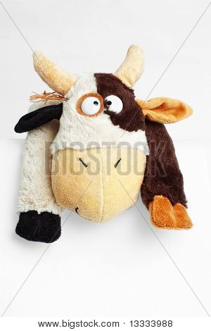 soft crazy cow toy