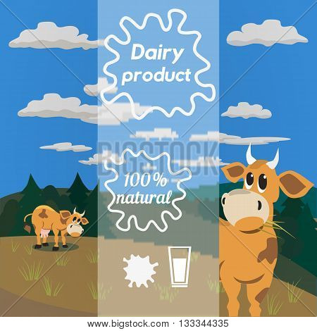 Milk cow. Dairy natural product Concept. Dairy farming concept. Nutritional product. Fresh farm organic product. Camomile from milk bottles. Milk splashes. Vector illustration