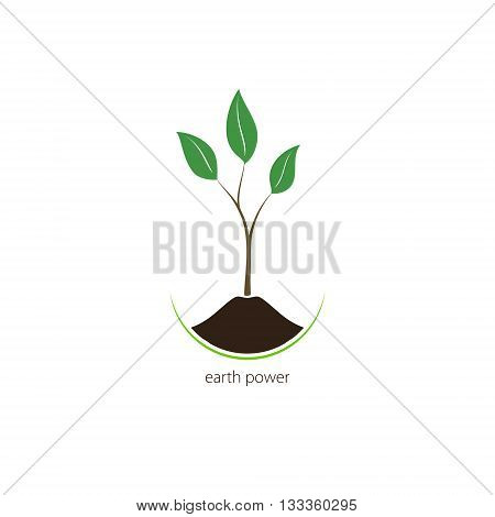 Earth Power, Sprout , a Young Shoot Isolated on a White Background , Plant Shoot Growing Up out of the Land, Vector Illustration
