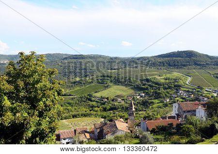 Motovun Village In Croatia, Europe