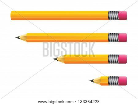 Vector stock of new and used pencils in different length and sizes