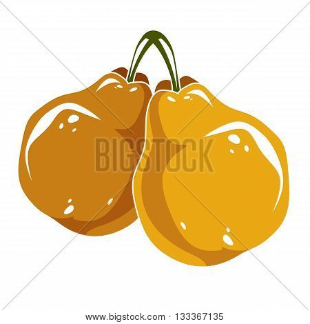 Two Yellow Simple Vector Pears, Ripe Sweet Fruits Illustration. Healthy And Organic Food, Harvest Se