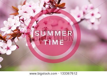 Text Summer Time and cherry blossoms over blurred nature background, close up