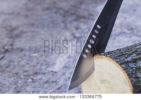 the machete stuck in a tree stump