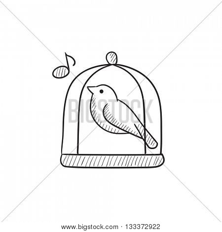Bird singing in cage vector sketch icon isolated on background. Hand drawn Bird singing in cage icon. Bird singing in cage sketch icon for infographic, website or app.