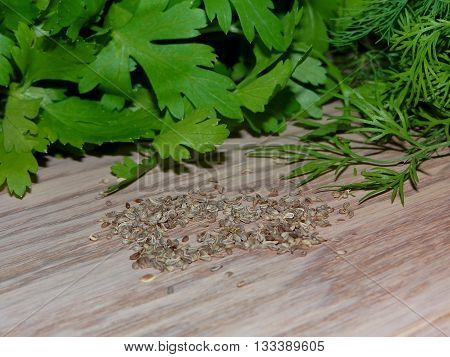 parsley seeds, which are lying next to parsley and dill on wooden boards