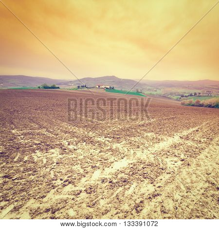 Plowed Sloping Hills of Tuscany in the Spring at Sunset Retro Effect