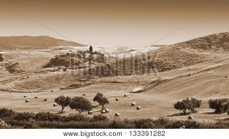 Landscape of Sicily with Many Hay Bales Vintage Style Sepia