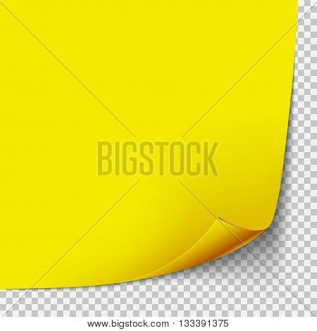 Curl corner yellow paper taemplate. Transparent grid. Empty isolated background page.