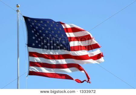 Torn American Flag 6422