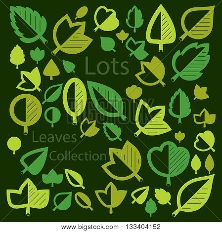 Spring tree leaves botany and eco flat images. Vector illustration of herbs collection of natural and ecology elements can be used in web design.