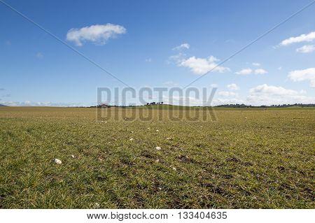 Soria rural field in Castilla Leon, Spain