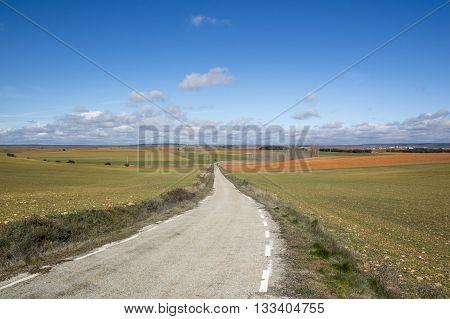 Way through the field Soria, Castilla Leon, Spain