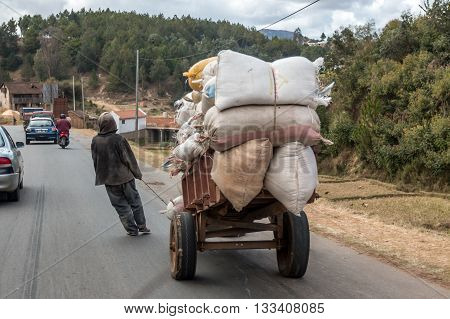 Rice Farmer In Town