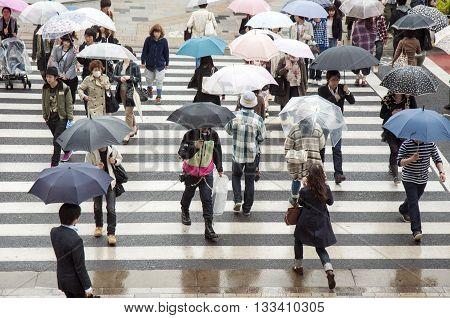 TOKYO - APRIL 23 2011 : many people under umbrellas crossing urban street on April 23 2011 in Tokyo Japan.