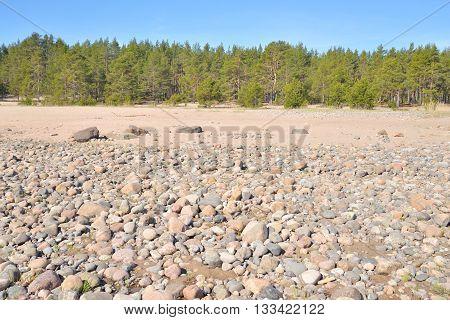 Beach on Ladoga lake at sunny morning the Karelian Isthmus.