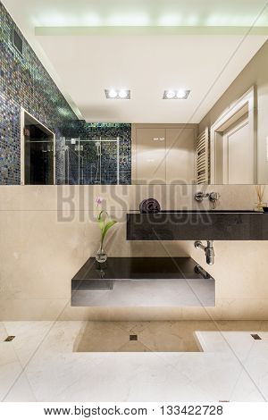 Amazing Bathroom Design