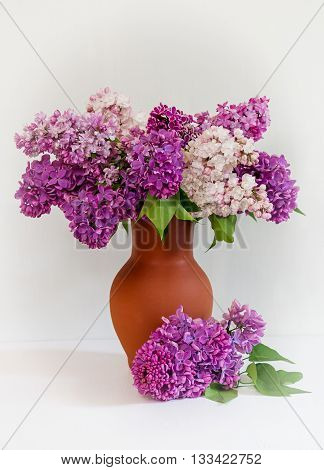 Beautiful bouquet of lilac in a clay vase. Vase with flowers of lilac. White vignette.