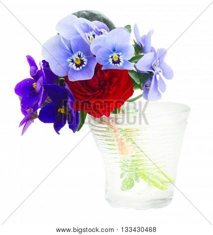 Posy of violets, pansies and ranunculus in glass isolated on white background