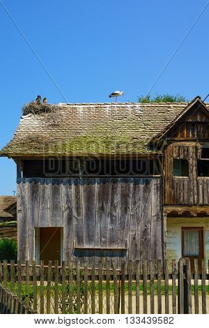 Wooden House, With Storks, Croatia